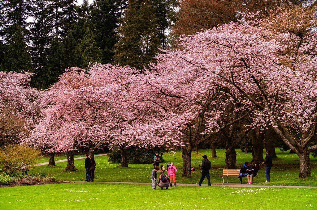 Mùa xuân tuyệt đẹp tại Canada